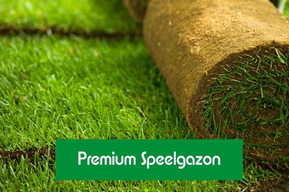 Premium Speelgazon Graszoden