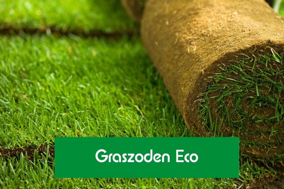 Schaduwgras Eco